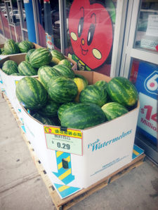 A Lament to Watermelon (and my ITB)